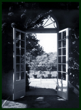 looking through french doors onto a sunny garden